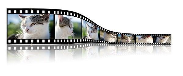 Convertir de la vidéo et de la musique facilement avec Movavi Converter